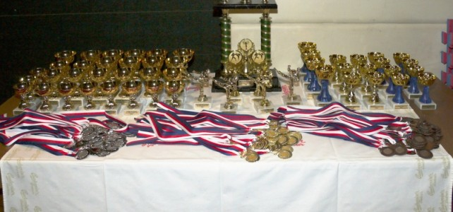 Budweis Cup 2009