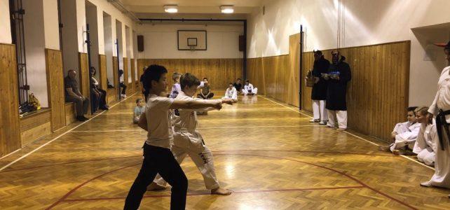 Čerti na dětských trénincích aneb i v pekle se cvičí Taekwon-Do