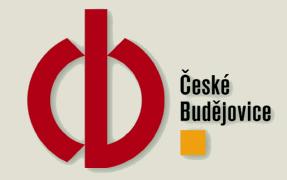 Město České Budějovice